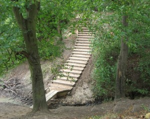 Five volunteers installed this sleeper bridge on Staveley Footpath 58 last week