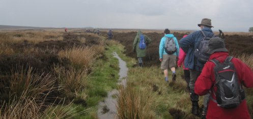A walk across Eastmoor