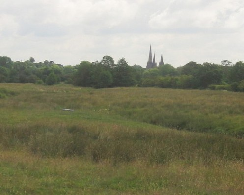 The three spires of Lichfield Cathedral  from Pipe Hall Farm