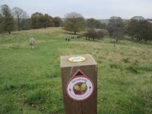 In Hardwick Park