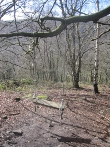 Swing in Bow Wood