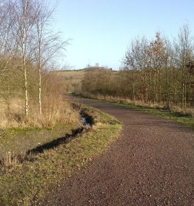 The Five Pits Trail near to Holmewood