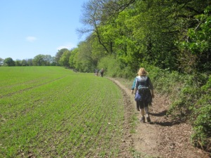 A long string of walkers on the way to Stone Edge