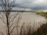 Settling Pond, Blakedon Hollow