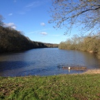 Welbeck Lakes