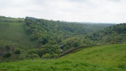 Wyedale