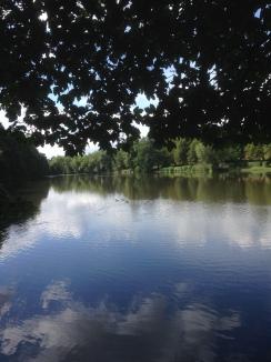 Ringwood Park
