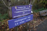 Hollingwood or Istanbul ?