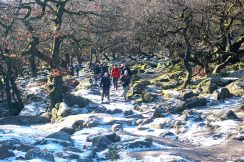Emerging from Padley Gorge