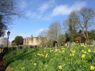 Tutbury Castle from St Mary's Church