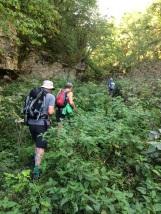 In Cales Dale, avoiding the nettles
