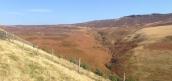 Panorama descending to Wellhead