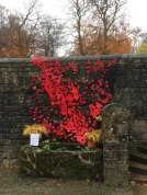 Poppies at Longshaw (a convalescent home in WW1)