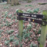 Beggars Walk, leading to the site of Shipley Hall