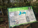 Carr Vale Dragonflies